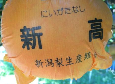梨の実祭り