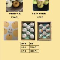 窪田梨果園の価格表